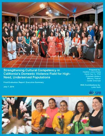 Blue Shield Cultural Competency Project Report Cover